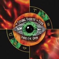 Tool - The Section - Third Eye Open The String Tribute...