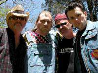 Hayseed Dixie - Fade To Bluegrass