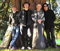 Snowy White Blues Project
